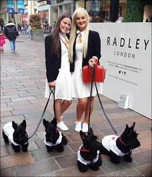 events staff swindon shopping centre