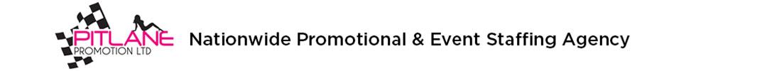 Pitlane Promotion web banner